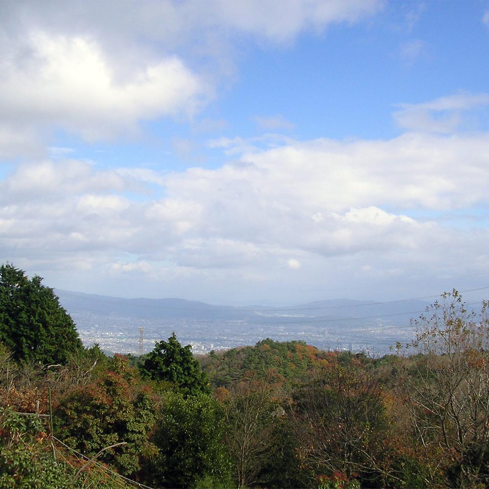 頂上からは眼下に京都の町並みが広がります。
