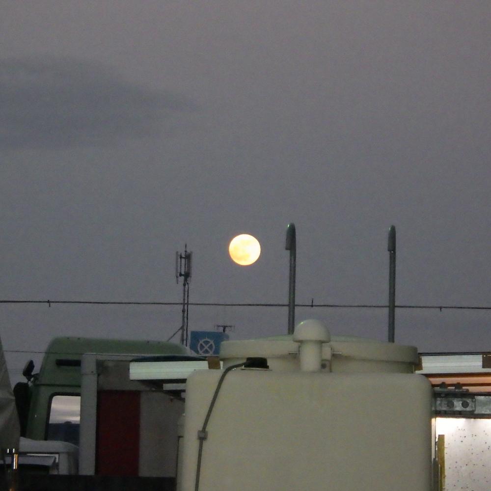 餅つき大会前夜。丸餅のような満月。